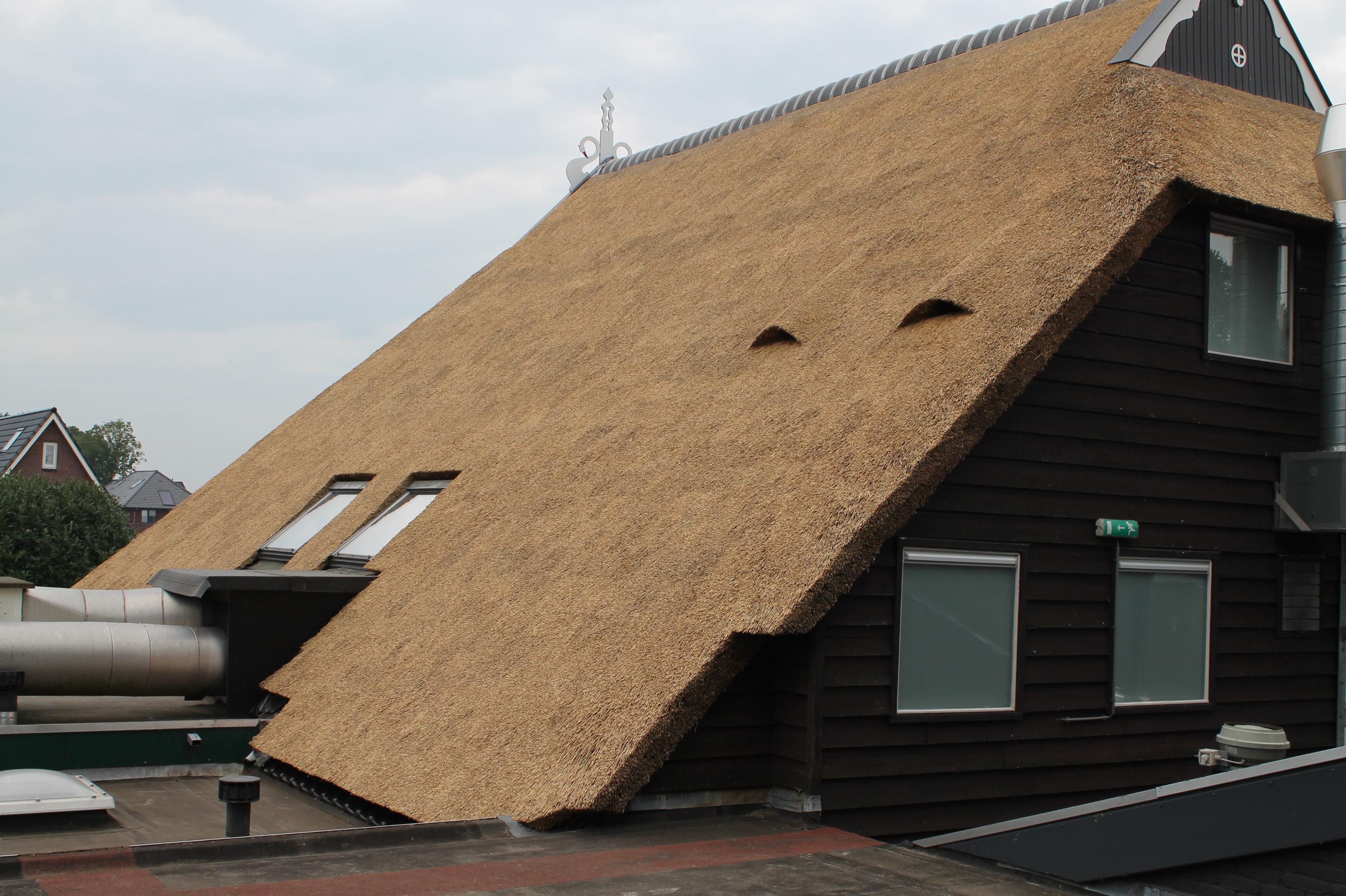 rieten dak van Sikkema rietdekker